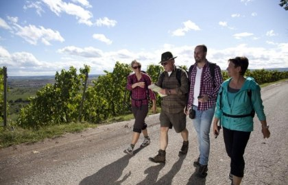 Weinwanderer, © Touristikgemeinschaft HeilbronnerLand e.V.