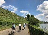 Neckartal-Radweg, © Stuttgart-Marketing GmbH