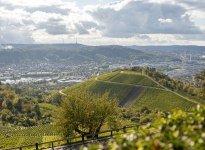 Vineyards Stuttgart, © Nicole Hagemann